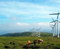 Solar Alternative Energy