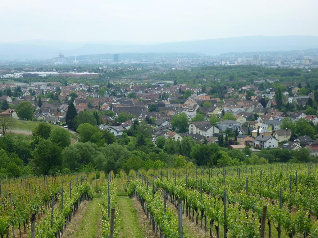 Vitra - vista restaurant Weil am Rhein