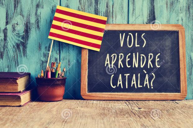 Programació Curs de Català Curs 2021-2022